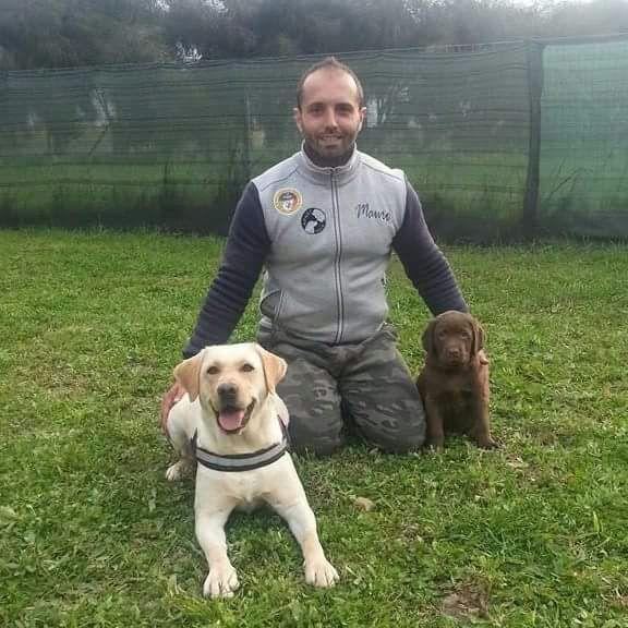 Mauro Carta educatore cinofilo con due allievi Labrador