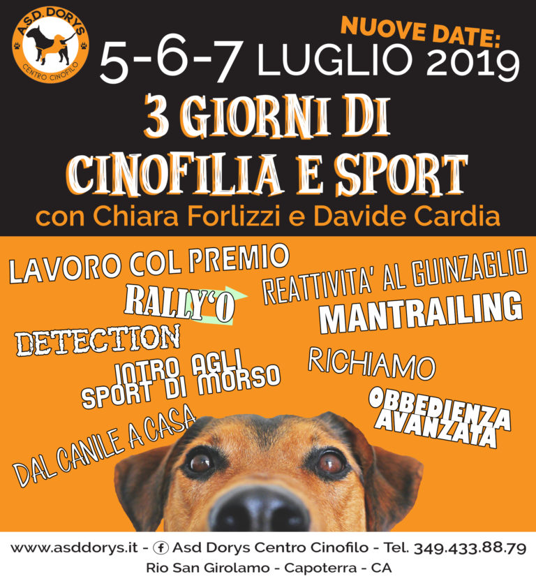 stage cardia 2019