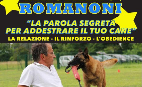 Maurizio Romanoni stage